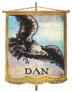 dan_small--banner